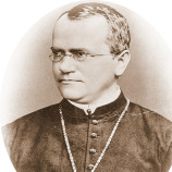 J.G.Mendel ( Československá a česká cesta k demokracii )