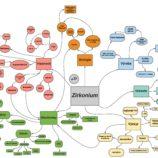Zirkonium-page-001